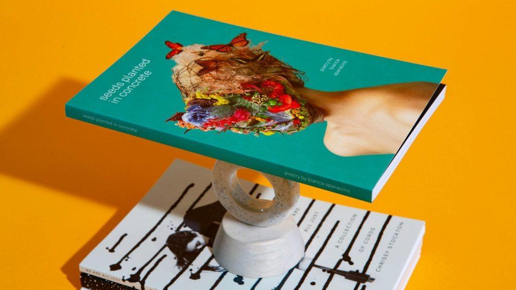 foto de capas de livros diferenciados